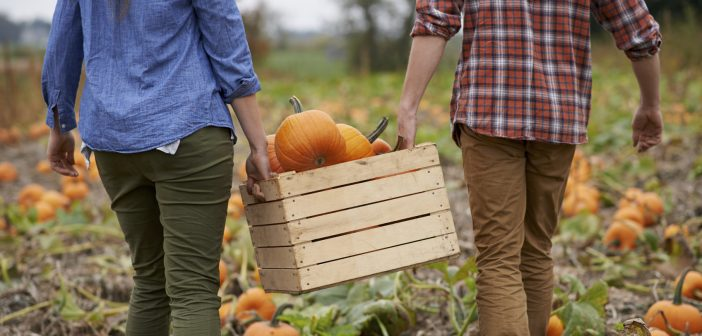 Fun Halloween Activities For Brand New Couples