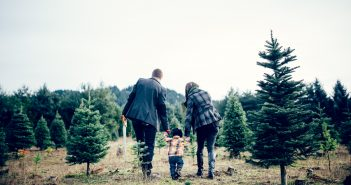 21 Family Quality Time Ideas For Creating Christmas Memories