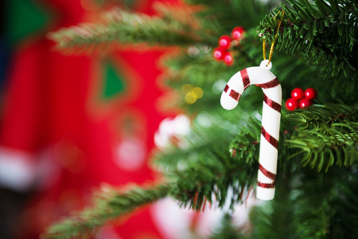 back for christmas interpretation Noel definition, the christmas season yuletide see more.